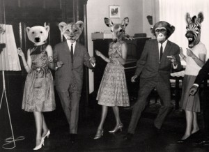social media party animals